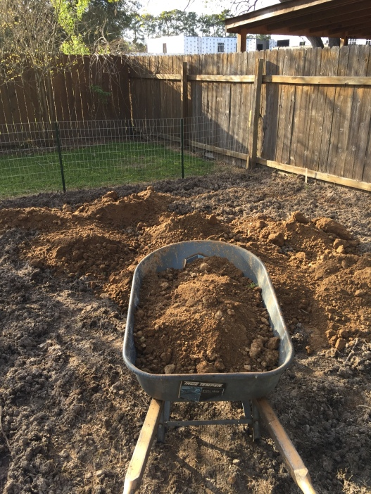 Bringing in new dirt.
